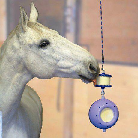 purpe-boredom-breaker-horse